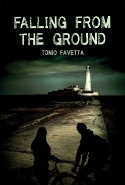 falling from the ground bookcover